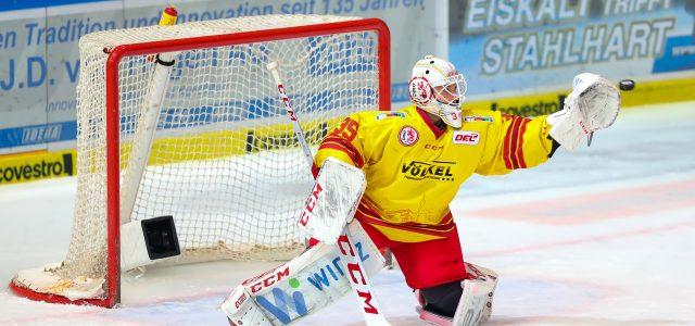 Mathias Niederberger kehrt zu den Eisbären zurück