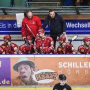 Max Kaltenhauser wird in Regensburg zur Dauerlösung