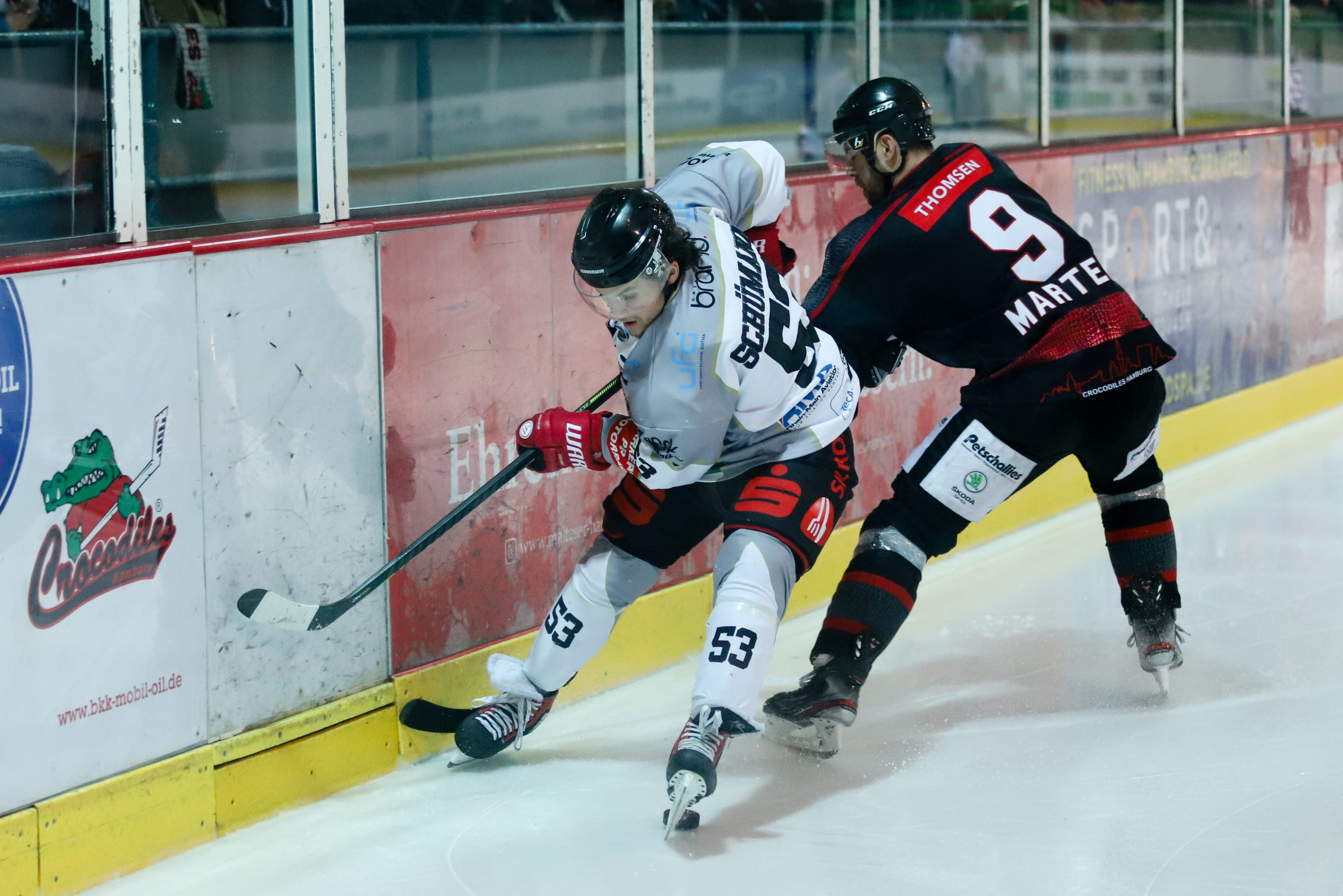 Erfurt Eishockey