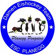 Planegger Eishockey-Freiluftderby Männer gegen Frauen geht in die dritte Runde