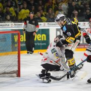 Bayreuth: Specialteams lassen Tigerkäfig langsam wieder zur Festung werden