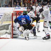 Ravensburg: Playoffs können kommen! Towerstars stehen im Viertelfinale