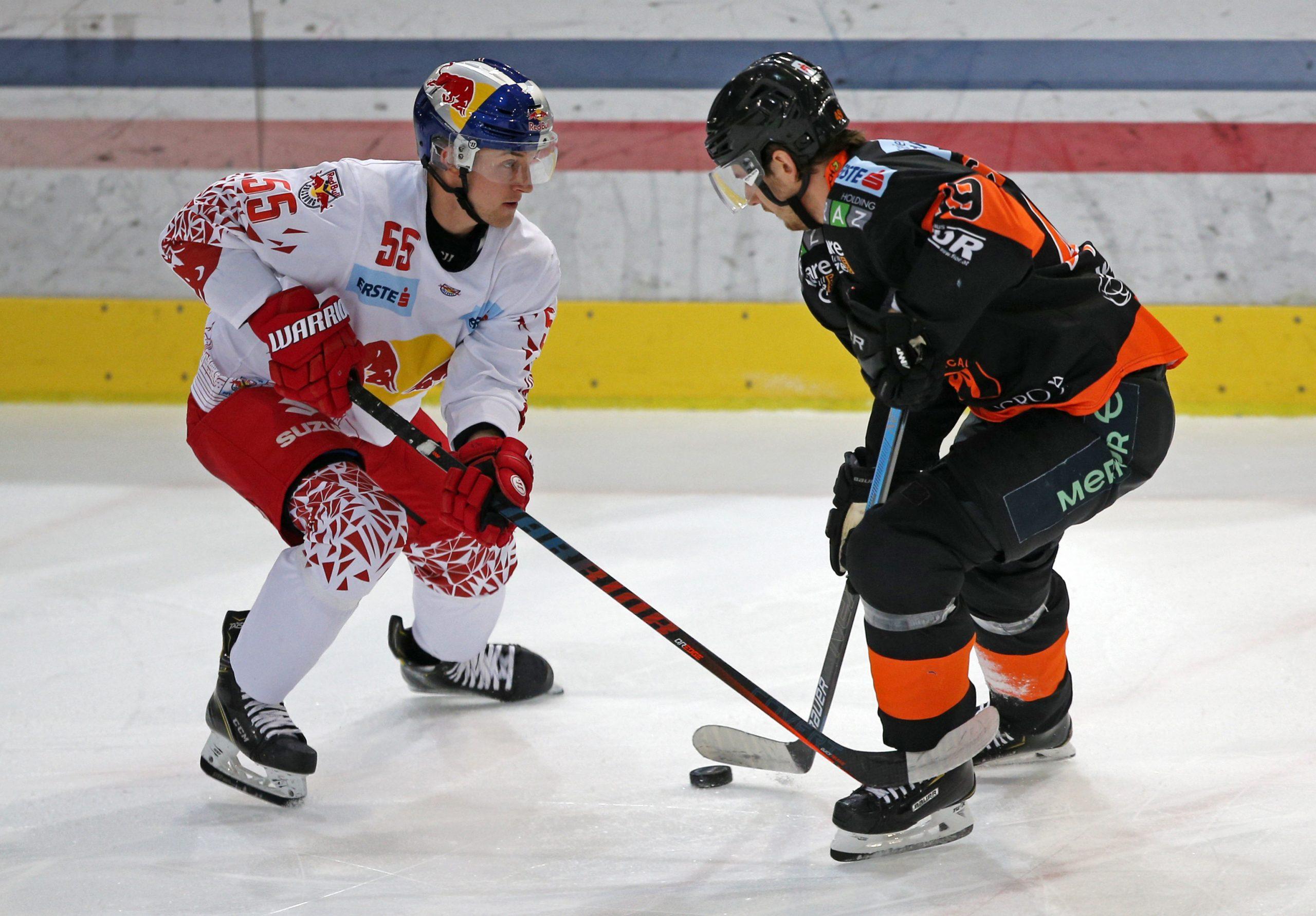 Shl Eishockey