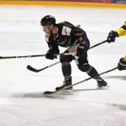 Stürmer Duo wieder vereint – Nächster Spieler mit Champions Hockey League Erfahrung verstärkt die Black Hawks