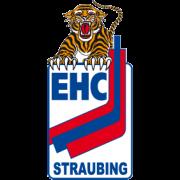 Neue Vorstandschaft gewählt: Peter Zankl und Co. übernehmen das Ruder beim EHC Straubing e.V.