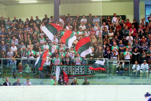 AEV-Fans beim Finale