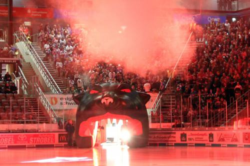 Nürnberg Ice Tigers Fankurve