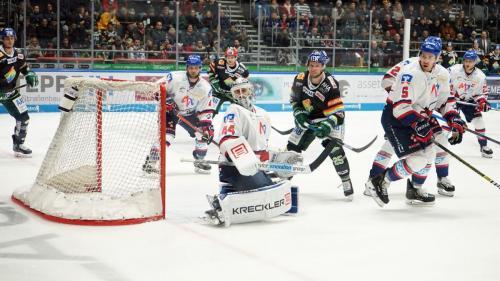 Augsburger Panther vs.  Adler Mannheim