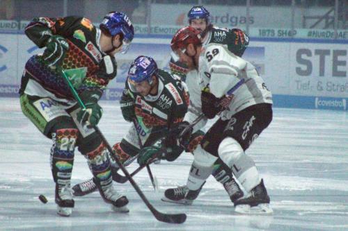 Eröffnungs-Bully  Spiel Augsburger Panther vs Kölner Haie