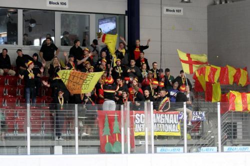 Fans des SC Langnau Tigers