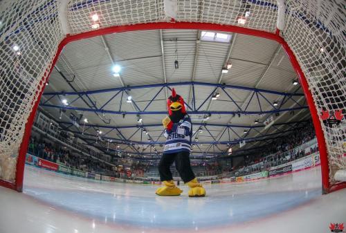 Eishockey, DEL, Iserlohn, Iserlohn Roosters vs. Kölner Haie