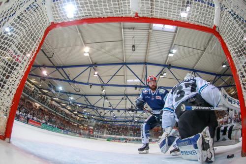 Iserlohn Roosters vs. Straubing - 03863 Kopie