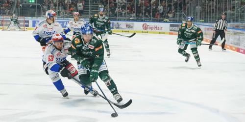 Augsburger Panther - Schwenninger Wild Wings (01.11.2019)